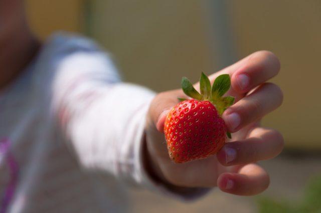 爪 薄い 厚くする 栄養